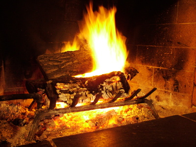les cendres de bois sont recyclables vivons colo. Black Bedroom Furniture Sets. Home Design Ideas