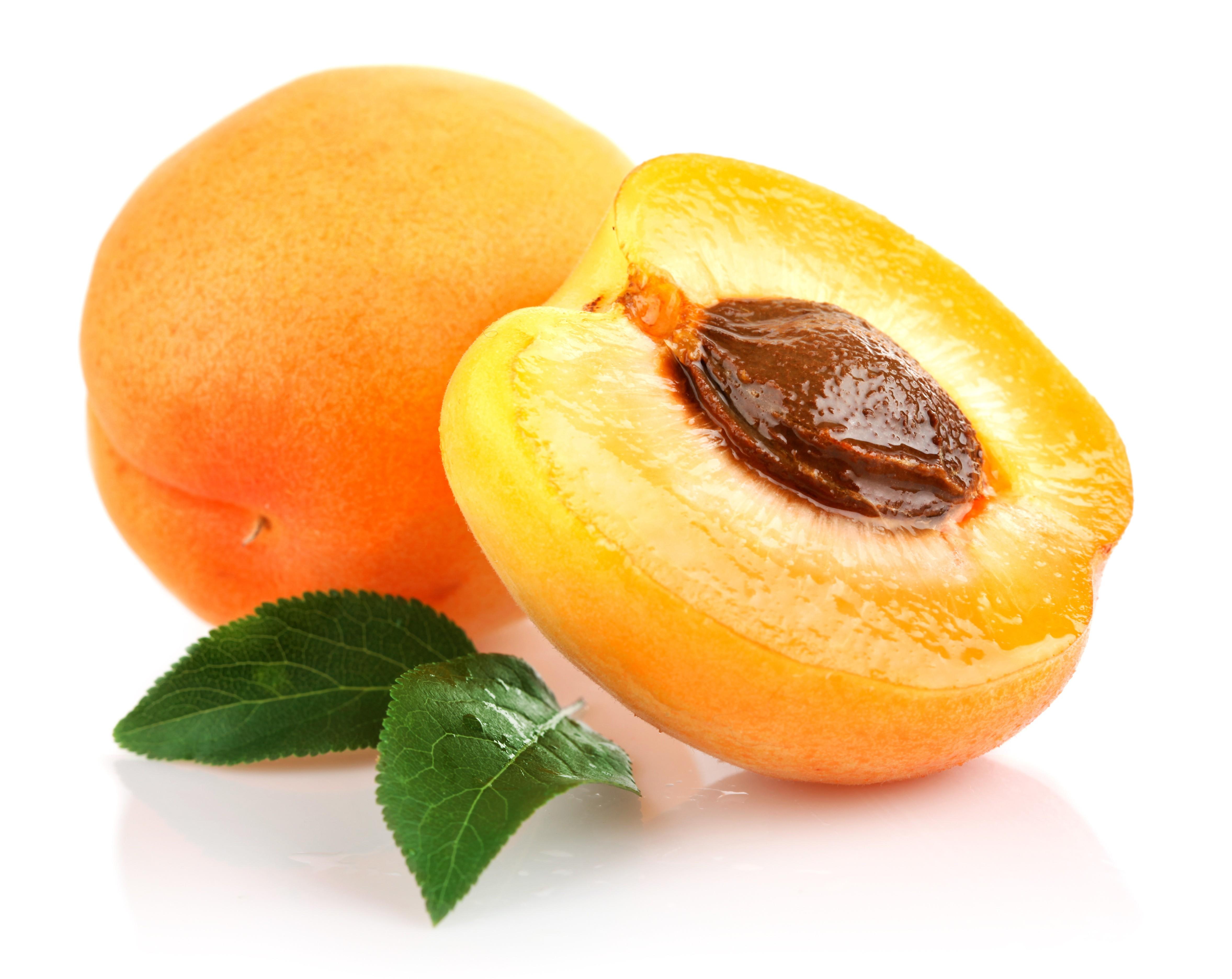 L 39 huile v g tale de noyau d 39 abricot - Planter noyau d abricot ...