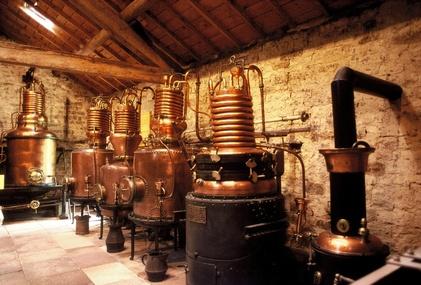 l'aromathérapie huiles essentielles