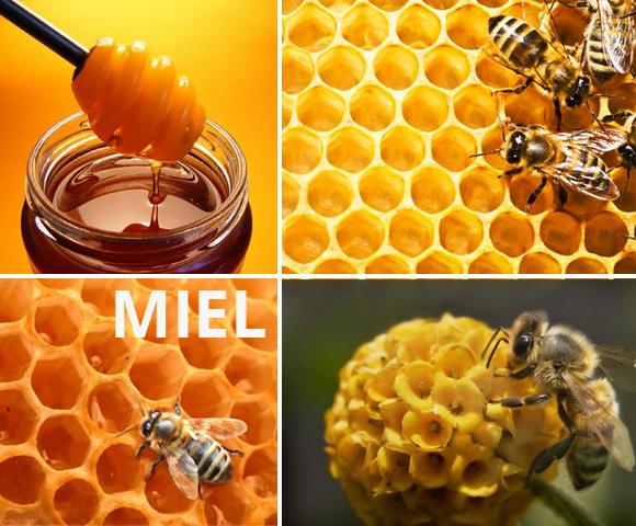 Miel et nourrissons - 580 x 480